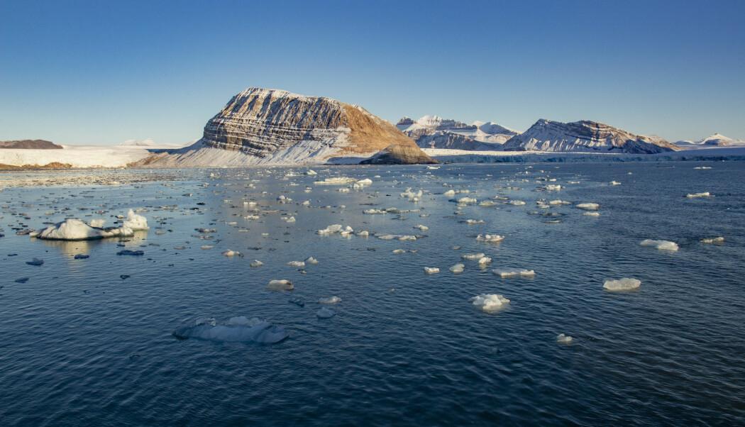 Hvordan har livet i havet og i nord blitt tilpasset til de lave temperaturene? Forskere på UiT prøver å finne svar. (Illustrasjonsfoto: Are Føli / NTB scanpix)