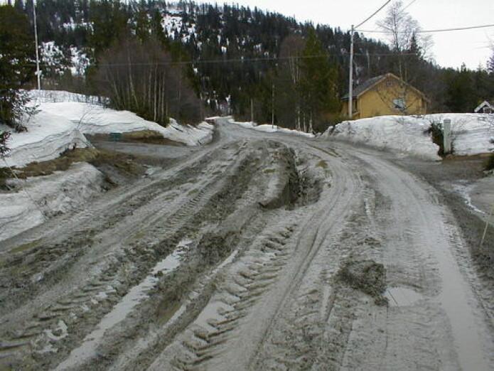 Teleløsning på fylkesveg i Budal, Trøndelag (Foto: Statens vegvesen)