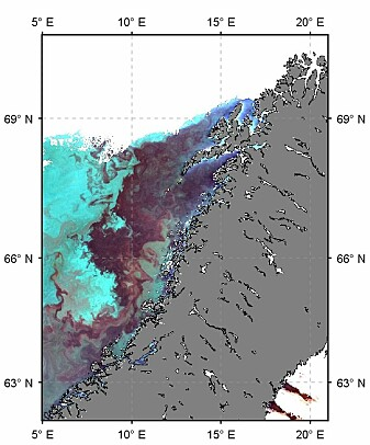 Satellittbilde som viser storskala virvelstrukturer (mesoscale eddies) fra våren 2018. (Foto: NEODAAS)