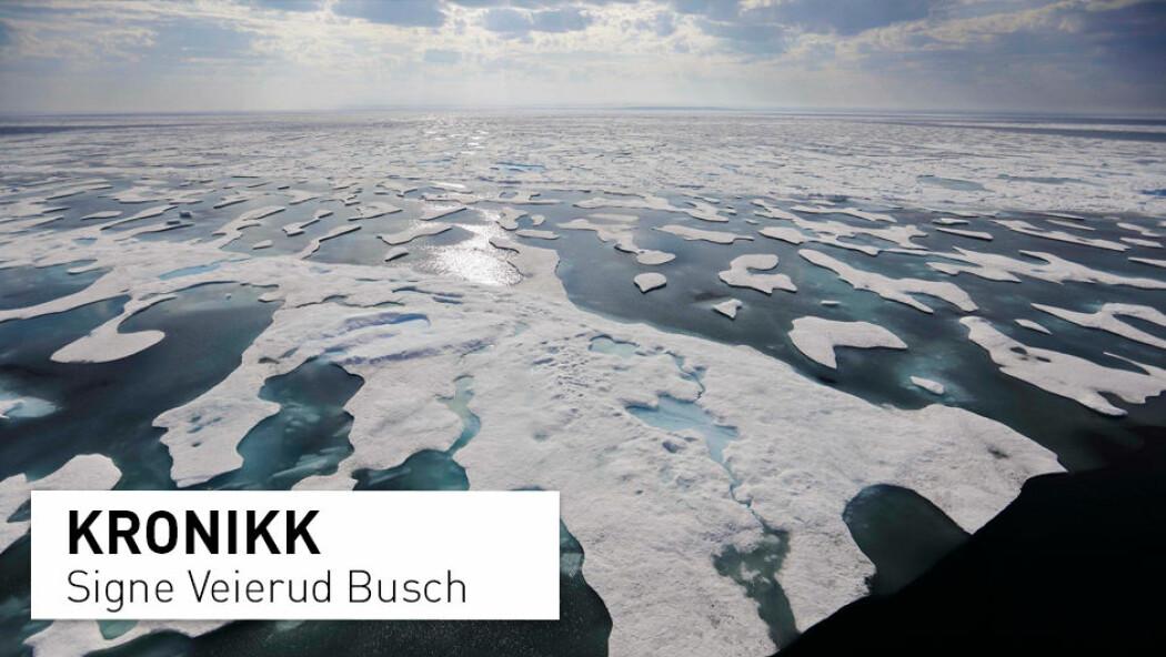 – Polhavet kan bli isfritt gjennom store deler av året. Dette aktualiserer stadig ny bruk av både havområdene og sokkelen, og legger press på de arktiske statene å forene seg om en løsning for deling og forvaltning av havbunnen, skriver kronikkforfatteren. (Foto: David Goldman / AP photo / NTB scanpix)