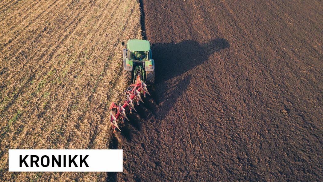 Nesten halvparten av europeisk landbruksjord har lavt innhold av organisk materiale grunnet intensivt landbruk og endringer i klima. Et utfordring er høstpløying, ifølge European Academies' Science Advisory Council. (Foto: Blazej Lyjak / Shutterstock / NTB scanpix)