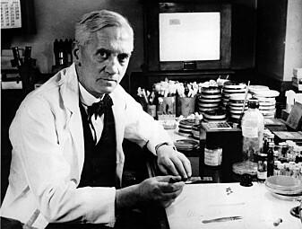 Alexander Flemings oppdagelse av penicillin startet i noen forurensede skåler. (Foto: AP / NTB Scanpix)