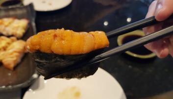 Kråkebolle er luksus i sushiverdenen. (Foto: Shutterstock)