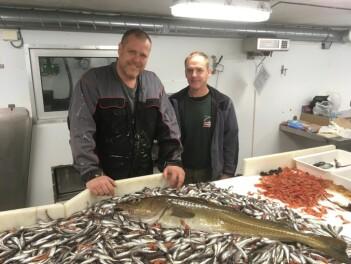 Jørgen Berge (til venstre) og Paul Renaud med fangsten fra et tråltrekk i Isfjorden 21. August 2019. 13 store torsk utgjorde 20 prosent av totalvekten på fangsten, mens omtrent 12 000 polartorsk utgjorde 70 prosent av vekten. (Foto: Fredrik Broms)