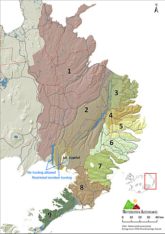 Reinen er i dag utbredt over store deler av øst-Island. (Illustrasjon: Skarphedinn G. Thorisson)
