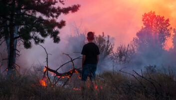 11 000 forskere erklærer klimakrise i nytt opprop