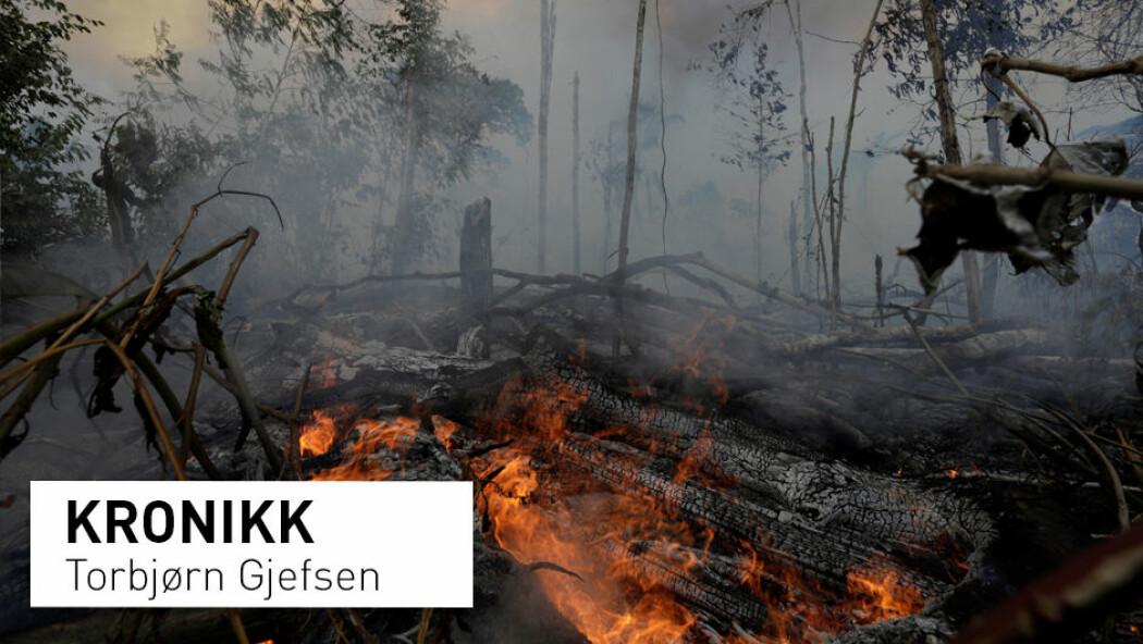 – Studien anslår at utslippene frem til 2050 fra tap av intakt skog vil være mer enn seks ganger større enn det som tidligere har vært kjent, skriver Torbjørn Gjefsen. Bildet er fra en brann satt av bønder og tømmerhuggere i den brasilianske regnskogen i slutten av august. (Foto: Ricardo Moraes / NTB Scanpix)
