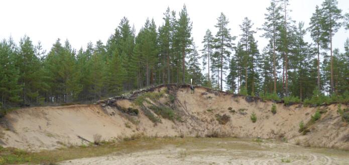 Vi fant avgjørende spor i et massetak i en 8 meter høy sanddyne (markert med rød prikk i forrige figur). Person for skala (hvit pil).