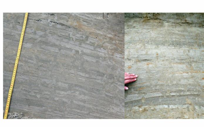 Vannfluktstrukturer i sand. 'Rørene' skjærer gjennom sandlagene. De ser ut til å være korte og fragmentariske, men det er et resultat av at de bukter seg og kuttes i snittet. Fotoet til venstre er fra toppen av 8 meter høy sanddyne (som du ser på forrige bilde). Fotoet til høyre er fra sandslettene rundt dynefeltet.