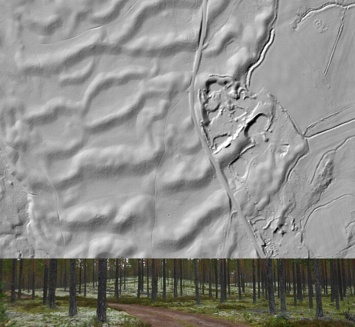 Skyggerelieff fra laserdata av tilgrodde sanddyner ved Starmoen naturreservat i Elverum. Dette har vært kjent som en klassisk lokalitet for vindavsatte dyner. De nye studiene viser at disse også er avsatt fra ekstremflommen.