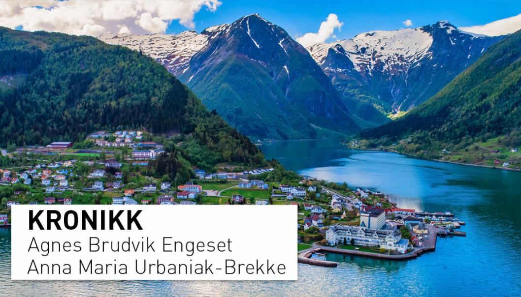 – Dei ofte godt vaksne gjestene har gjerne på førehand studert bilete og skildringar av verdas vakraste fjordar, imponerande fjell og idylliske kulturlandskap, skriv kronikkforfattarene.