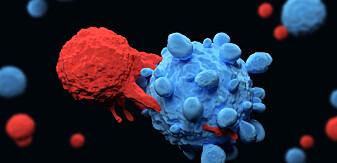 Forskere har kommet et skritt nærmere å gjøre immunterapi tilgjengelig for mange flere kreftpasienter