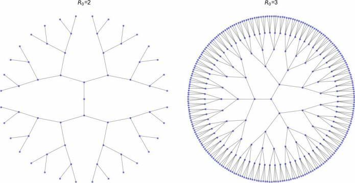 Illustrasjon av hvordan antall smittede vil vokse dersom hver person smitter i snitt 2 eller 3 friske. En slik sykdom sies å ha et reproduksjonstall,R0, på henholdsvis 2 og 3.