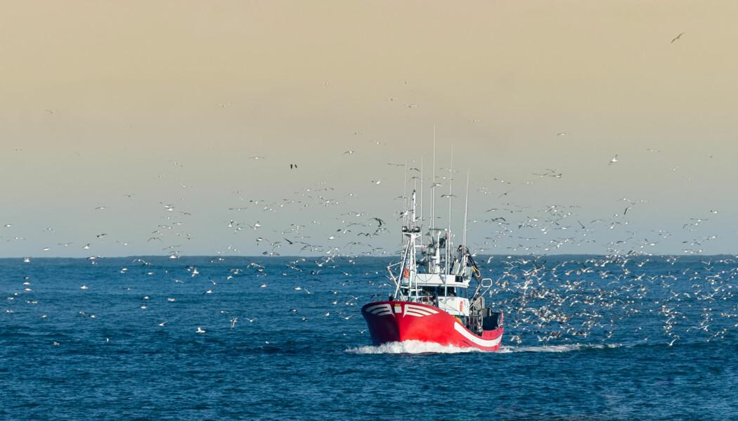 For hvem eier egentlig fiskerettighetene når fisken befinner seg innenfor helt nye territoriale grenser? Det er en floke, skriver Tore Henriksen.