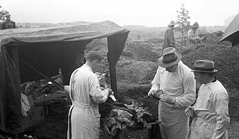 Kven var dei sovjetiske krigsfangane som ligg gravlagd i Noreg?