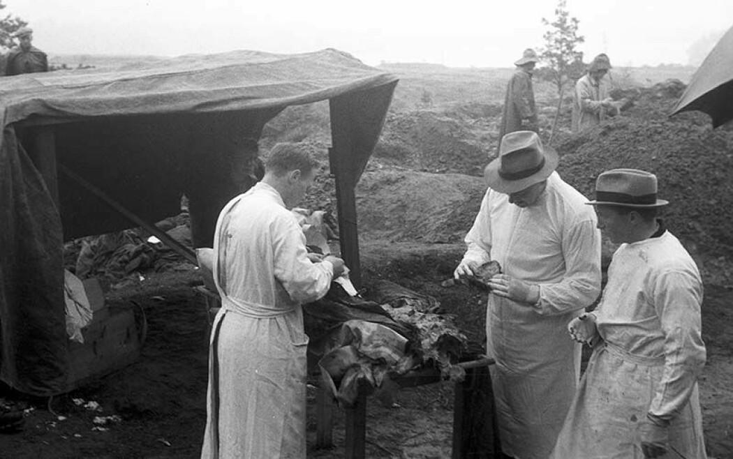 Biletet er frå oppgravinga av sovjetiske krigsgraver i leiren Tennebekken i 1945. 92 graver vart flytta herfrå til Gravdalspollen, der dei er no.