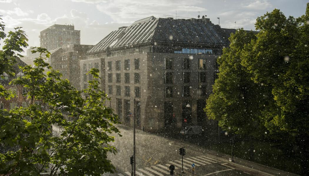 Stålet i bygningene tåler en saltholdig atmosfære dårlig. I Oslo kan det være realiteten, siden byen ligger nært sjøen og på grunn av veisaltingen om vinteren, forklarer Terje Grøntoft.
