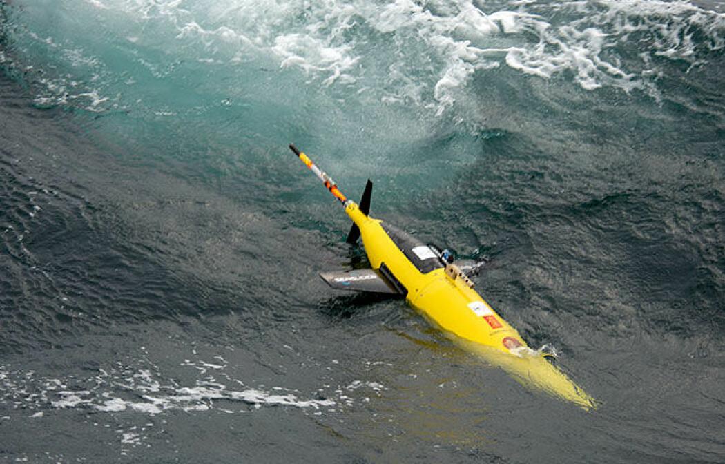 Den sjølvgåande roboten kan gi ny innsikt i prosessane som hender under isen i Barentshavet.