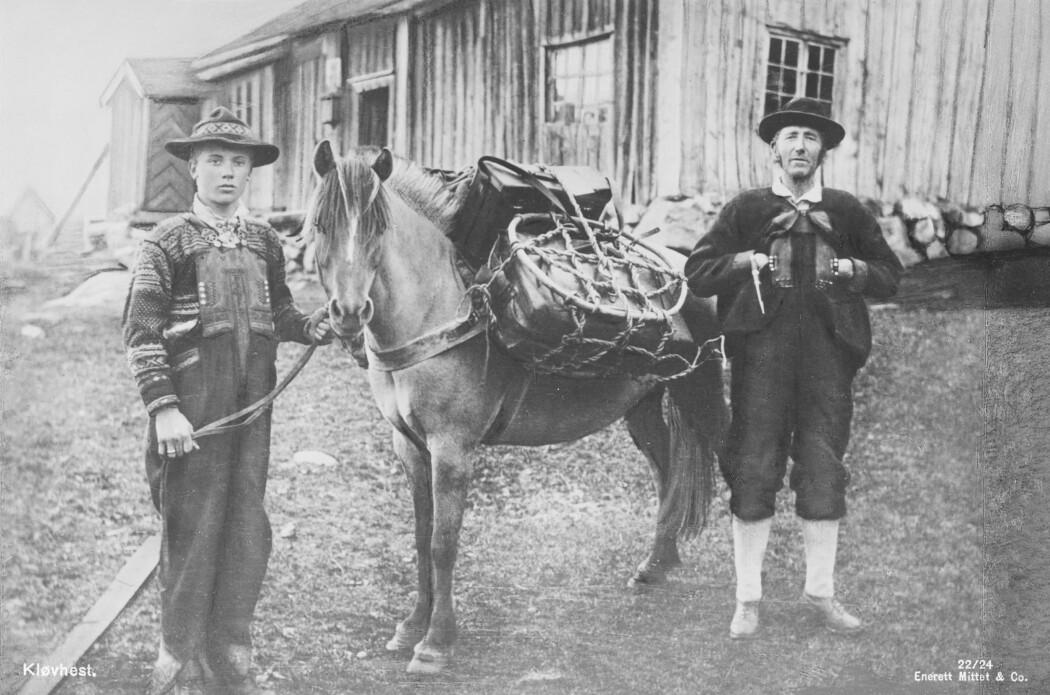 Ein kløvhest med bør på ryggen fotografert i Setesdal på tidleg på 1900-talet
