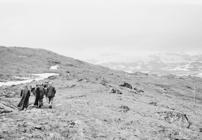 – Sjølv om ferdselen hovudsakeleg gjekk føre på sommar og haust, kunne reisa over fjellet likevel vere farefull, skriv Kjetil Loftsgarden.