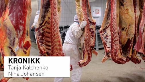 Det er på tide å innføre skatt på kjøtt og avvikle matprat.no