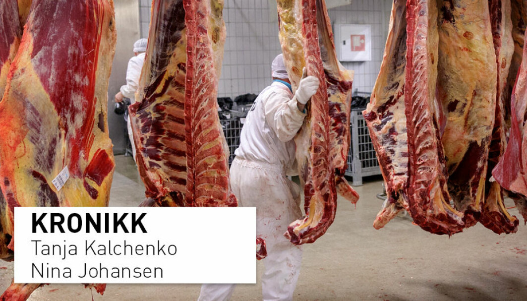 De største pandemiene i moderne tid kan alle spores tilbake til bruk av dyreprodukter, skriver kronikkforfatterne. Bør det innføres en skatt på kjøtt for å kompensere for eventuelle skader kjøttproduksjonen påfører oss?