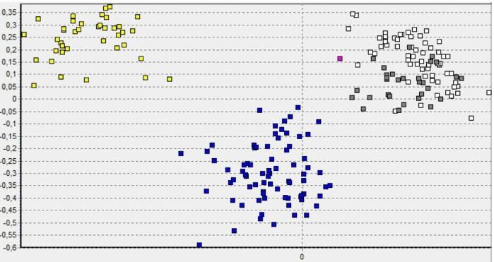 Dette er en «clustringsanalyse» av den mye omtalte Elgåulven, som er den rosa firkanten øverst mot høyre. Resten er referansemateriale av skandinaviske ulver (blå), finske ulver (hvit), ulver fra russisk Karelen (grå), og skandinaviske hunder (gul). Hver firkant representerer ett individ. Avstanden mellom dem reflekterer relativt slektskap. Vi ser at Elgåulven grupperer tydelig sammen med de finske og russiske referanseulvene, og en kvantitativ test bekrefter at han med 99,9 prosent sannsynlighet har opphav i den finskrussiske ulvebestanden.
