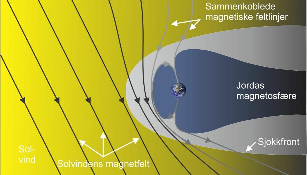 Jordas magnetosfære med sammenkoplingen på dagsiden mellom magnetfeltet i solvinden og jordas magnetfelt. Solen er til venstre i bildet. Figuren viser fire forskjellige sammenkoblede magnetfeltlinjer (i grått). To over den nordlige- og to over den sørlige halvkule. Figuren viser også sjokkfronten som oppstår på grunn av trykket fra solvinden på jordas magnetosfære. Grafikk: Dag A. Lorentzen/UNIS.