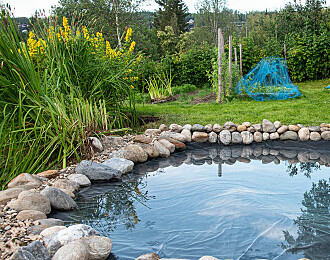 Lag en oase i hagen med sju enkle steg