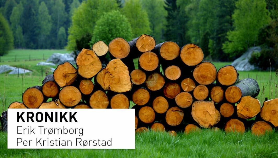 Slutter vi helt å hogge skog i Norge, øker karbonlageret med anslagsvis 35–40 millioner tonn CO2 per år på kort sikt. Redusert bruk av skogprodukter vil imidlertid øke bruken av olje, kull og gass.