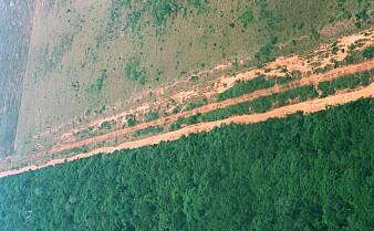 Bare en ørliten del av verden er økologisk intakt