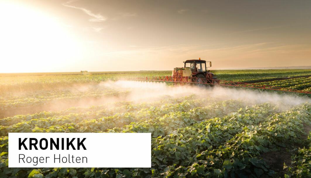 Forbud mot trygge plantevernmidler kan føre til økt bruk av mer problematiske kjemikalier, skriver Roger Holten.