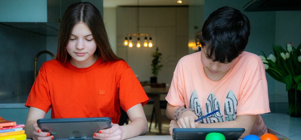 Hva lærte nederlandske skoleelever på hjemmeskole? Ingenting, anslår forskere