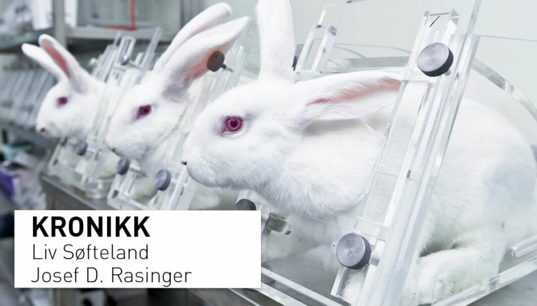 Dyreforsøk er kostbart, tidkrevende og sist, men ikke minst et spørsmål om etikk. Det finnes allerede og utvikles stadig alternativer, men vi mangler satsning på dette i Norge, skriver kronikkforfatterne.