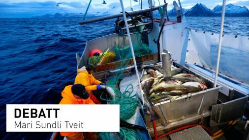 Forståelsen av havet i havnasjonen Norge er lav