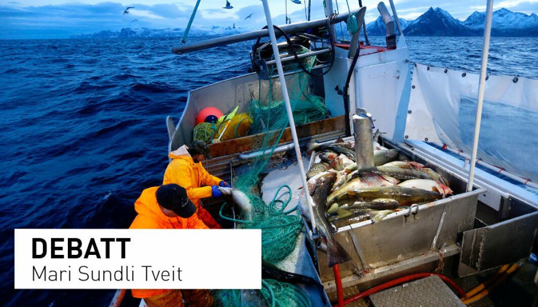 Havet er vår viktigste ressursbank. Vi kjenner antagelig bare en brøkdel av de muligheter havet gir oss til å mette en økende befolkning på en bærekraftig måte, skriver Mari Sundli Tveit.