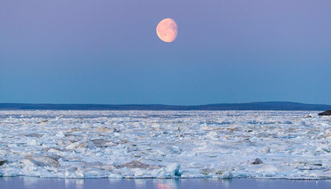 Eksperimentet i Arktis viste oss fascinerende nok at månen og havene bidrar til jordas rytmiske utslipp av gass, skriver forskere ved Universitetet i Tromsø.