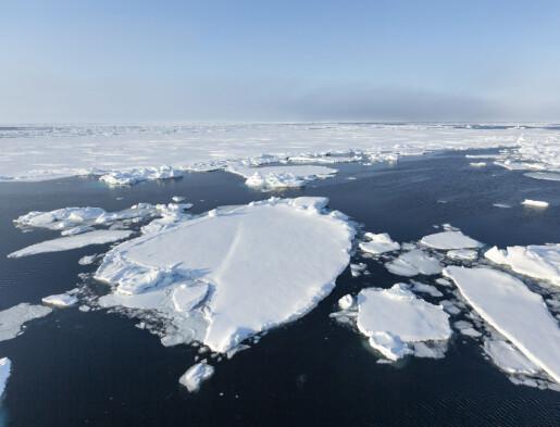 Er sommeren i Barentshavet varm i år?