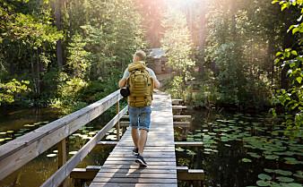 Selv korte spaserturer kan forandre hjernen til det bedre