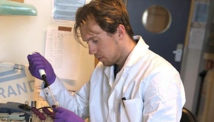 I denne laben oppdaget vi hvordan Viagra og Levitra fungerer ved lave temperaturer. Nå jobber vi videre med å teste flere medikamenter for å få et bredt bilde av mulighetene for behandling ved alvorlig nedkjøling.