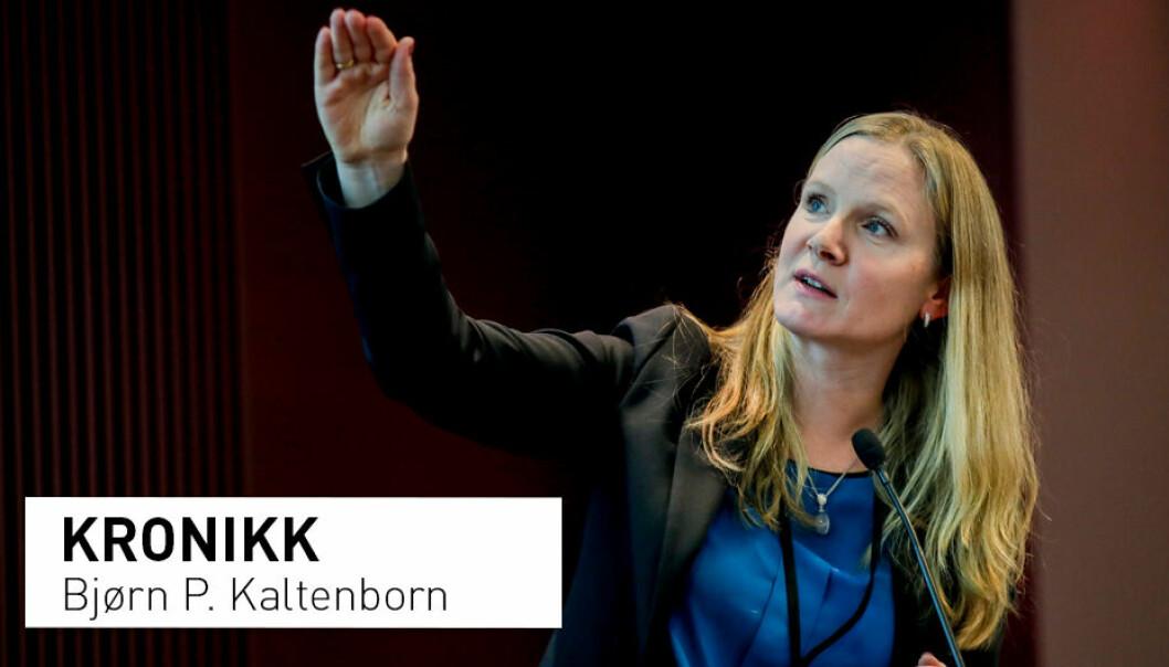 I dag er det bortimot umulig å få finansiert grunnforskning om norsk samfunn og miljø, skriver Bjørn P. Kaltenborn. Han etterlyser en annen politikk fra Forskningsrådet. Avbildet: Administrerende direktør i Forskningsrådet Mari Sundli Tveit.