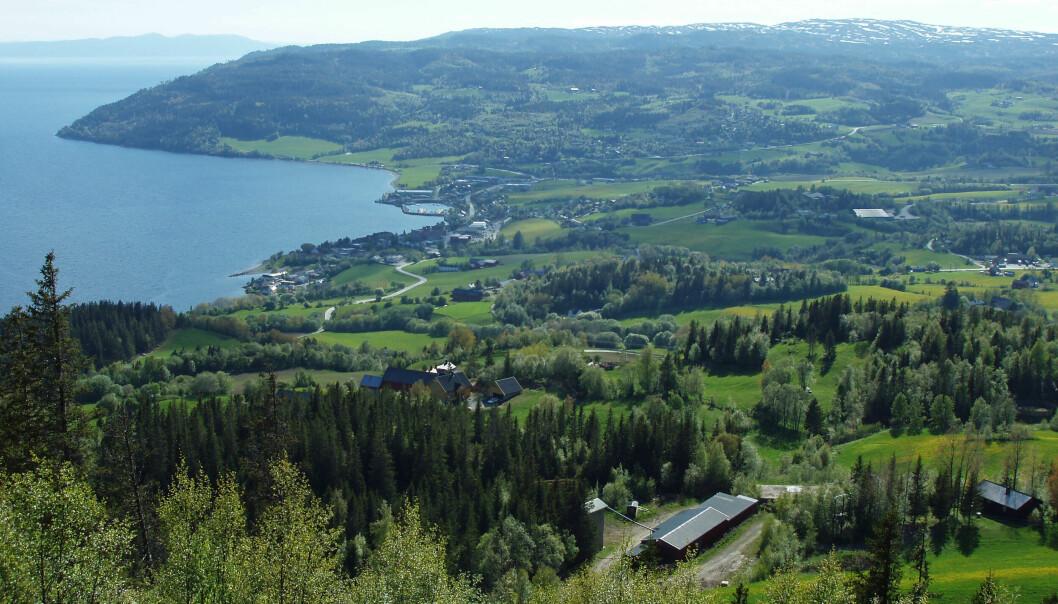 Undersøkelser ved Leksvik ved Trondheimsfjorden har gitt geologene presis kunnskap om hvordan istiden ble avsluttet, og den plutselige stansen i isens tilbaketrekning.